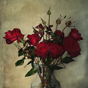 RED FOR LOVE by Sharon Pierson - Digital Art Things ( flower, nature, flowers )