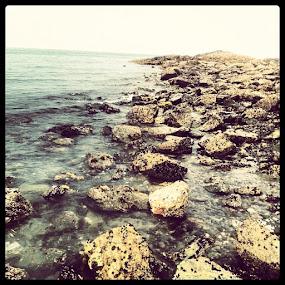 by Noah ONeill - Instagram & Mobile Instagram ( beach, water, ocean, sky, crabhunting )