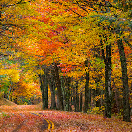 Headed to Autumn by Ken Smith - Landscapes Travel ( fall colors, western north carolina, autumn, landscape )
