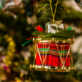 decoration in a christmas tree by Peet Snyder - Public Holidays Christmas ( decorate, holidays, merry christmas, festive, christmas, decoration, merry, presents )