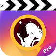 Popa Pro - Short Videos & Short Video Downloader