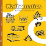 8th Maths NCERT Solution Icon