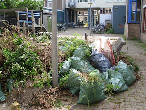 Photo: Nieuwe Houttuinen. De oogst van één weekend met z'n allen ertegenaan