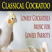 Classical Cockatoo (Lonely Cockatiels & Music for Lonely Parrots)