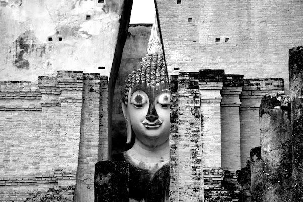 Buddha ti osserva.... di Alessandro Pezzo
