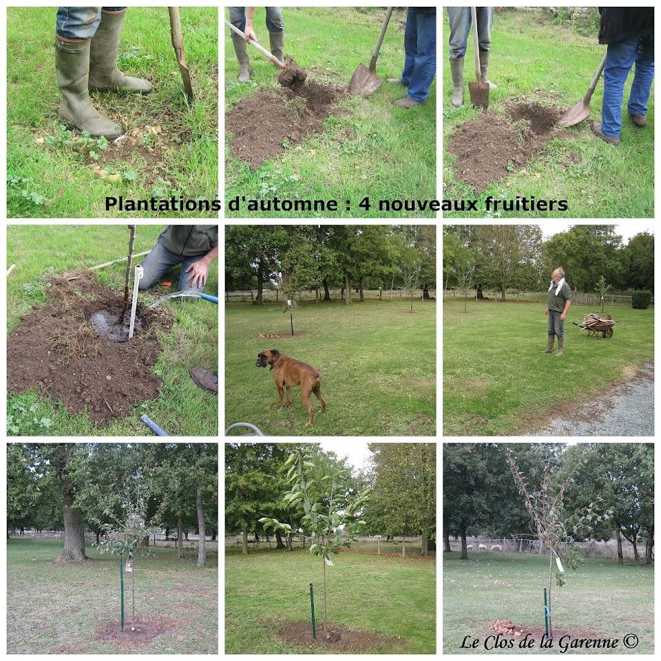 collage-plantations-dautomne-au-clos-de-la-garenne-17700-puyravault-chambre-dhotes-de-charme-proche-surgeres-la-rochelle