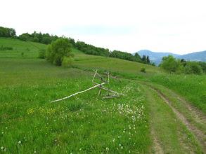 Photo: 15.Po lewej Wsołowa (624 m). Szlak nie przechodzi przez jej wierzchołek, ale można na niego podejść widoczną po lewej gruntową drogą. Na wprost Szczebel (977 m).