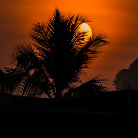 by Dharmesh Daula - Landscapes Sunsets & Sunrises