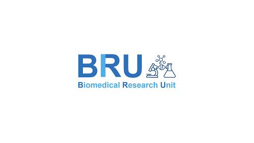 BRU Virtual Lab hack tool