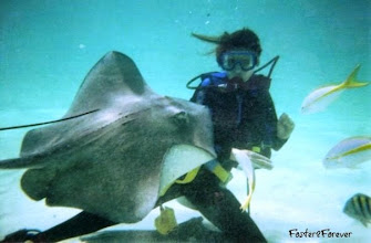 Photo: I booked an excursion to #Stingray City with MasterCard. The stingrays were HUGE!!!