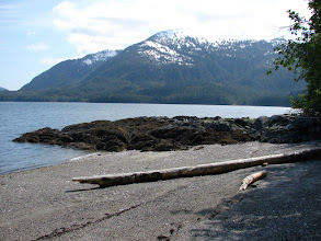 Photo: Mosley Point campsite looking west across Grenville Channel.