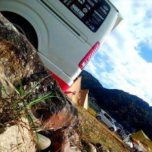 ハイエースバン TRH200Vのカスタム事例画像 シュナ 🐾🐶🐾CT2期生さんの2020年11月24日02:51の投稿