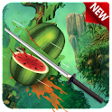 Ninja Fruit Cut Selva 2016 icon