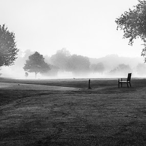 Foggy Morning by Filippo Arbinolo - Landscapes Prairies, Meadows & Fields ( uk, b&w, bench, black and white, grass, radley, landscape, morning, england, foggy, fog, oxford, trees )