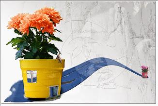 Photo: 2004 08 22 - R 04 08 18 743 w - D 047 - Juchnelda und ihr Blumentopf siehe D 114