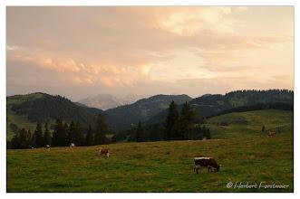 Photo: Sonnenuntergang /Sunset  Abendstimmung auf der Alm