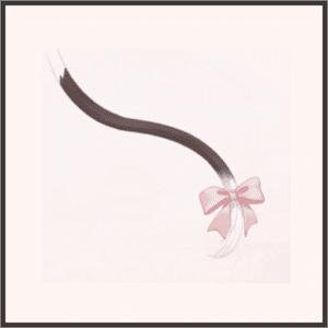白黒ネコの尻尾