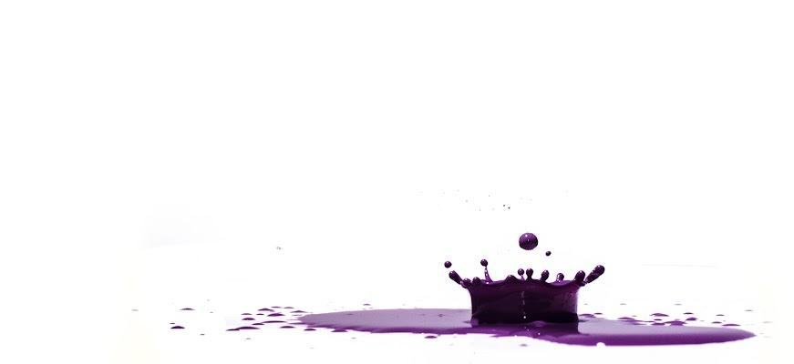 Splash di Simone Fedeli