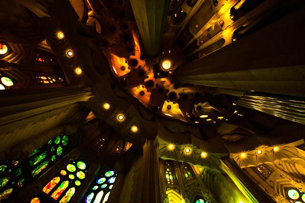 Sagrada Familia di marco loss