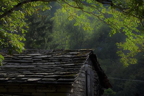 La casa nel bosco di pizzicastelle