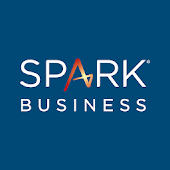 Capital One Spark Internal