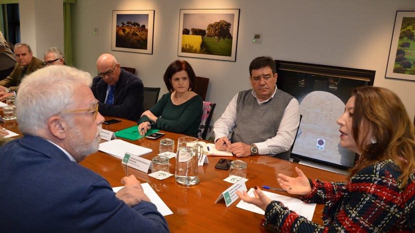 Imagen de la reunión mantenida en Sevilla.