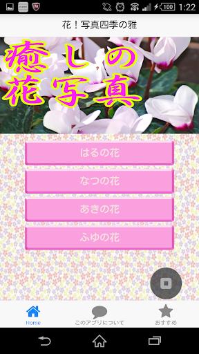 花!写真四季の癒し~美しい日本の花雅で心をリフレッシュ~