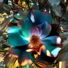 Lovely Rose by Cassy 67 - Digital Art Things ( digital, love, harmony, flowers, abstract art, abstract, flower, digital art, bloom, modern, light, rose, roses, energy )