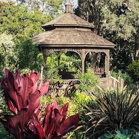 Garden Pagoda by Gail Marsella - Nature Up Close Gardens & Produce ( red, pagoda, green, san diego botanical garden, garden )