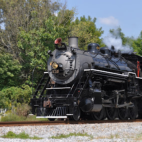 Iron Horse! by Roger White Jr. - Transportation Trains ( railroad, engines, trains, steam,  )