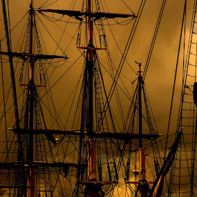 Rigger by Doug Faraday-Reeves - Transportation Boats ( mast, ship, rigging, sail, docks )