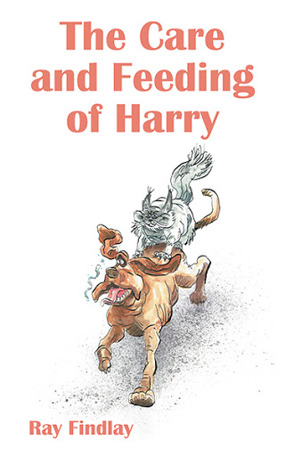 The Care and Feeding of Harry cover