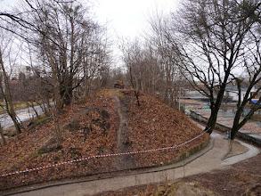 Photo: wycinka drzew, widok w stronę ulicy Wita Stwosza; poniżej przejście dla pieszych