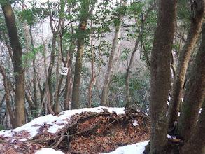 右に進むと登山道に合流(86番)