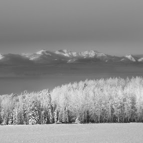 -40 First Big Freeze by Tara McKenzie - Landscapes Mountains & Hills ( #snow, #landscape, #rockymountains, #frostdays, #therockymountains, #canada,  )
