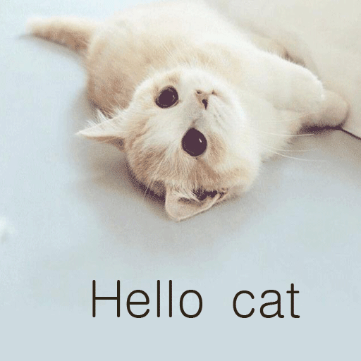 안녕하세요 고양이 娛樂 LOGO-玩APPs
