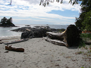 Photo: Looking south from Cape Fox.