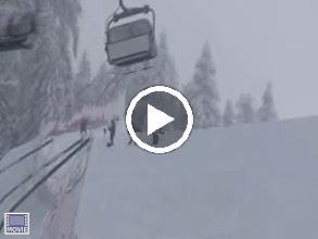Video: Monica