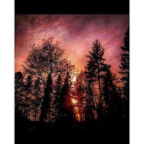 by Dawn Morri Loudermilk - Uncategorized All Uncategorized