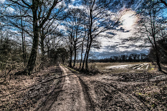 Photo: country road