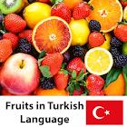 Aprenda frutos en turco icon