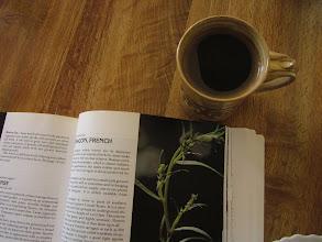 Photo: Morning reading