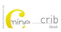 De KnipoogDag De KnipoogDag is een organisatie van vtbKultuur met de steun van volgende partners C-mine crib