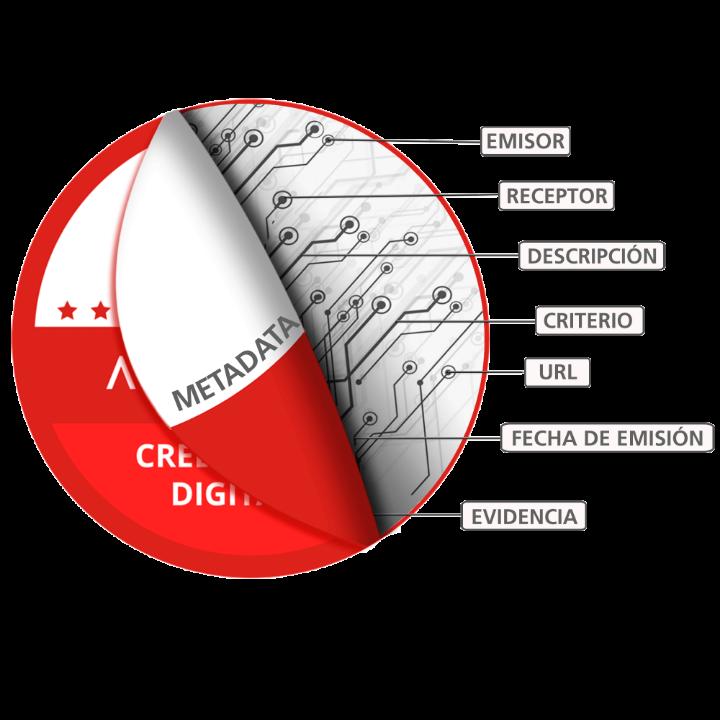 insignia digital