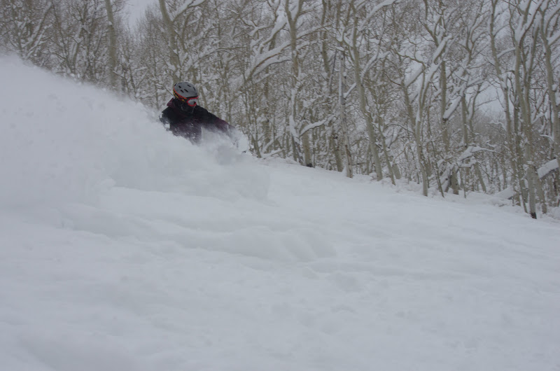 Photo: No shortage of pow.