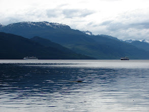 Photo: Cruise ships in Johnstone Strait.