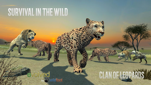Clan of Leopards