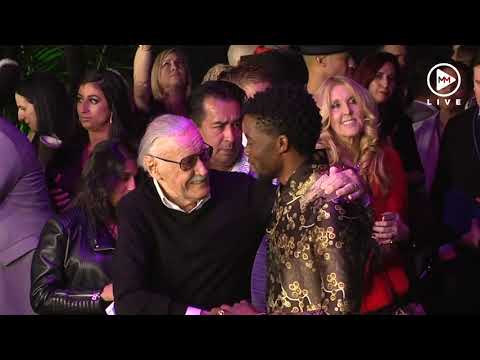Stan Lee, here with Black Panther star Chadwick Boseman died at the age of 95, his daughter said on Monday.