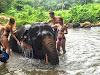 Huay Tho Elephant Trekking with Waterfall Adventure