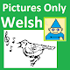 Vocab Game Pictures Only Welsh (game)